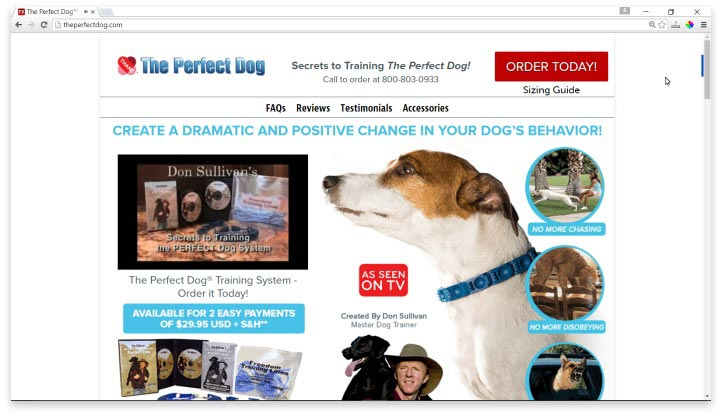 The Perfect Dog Website