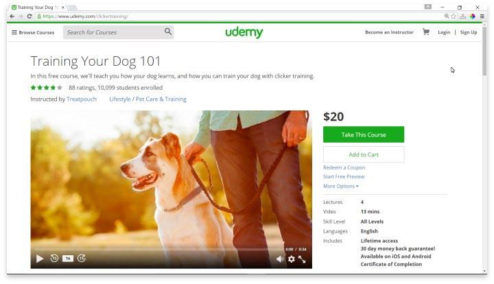 Dog Training 101 Website