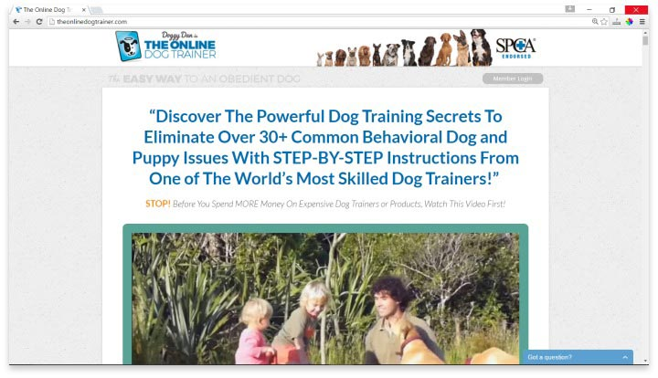 The Online Dog Trainer Website
