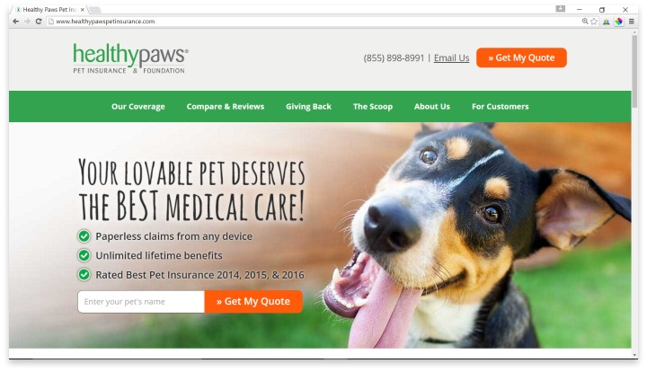 Healthy Paws Pet Insurance Website