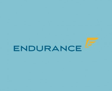 Endurance Warranty Reviews